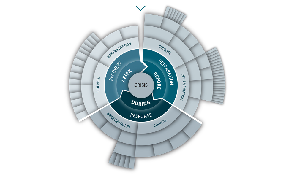 Services - The crisis wheel - TT&A Advisors
